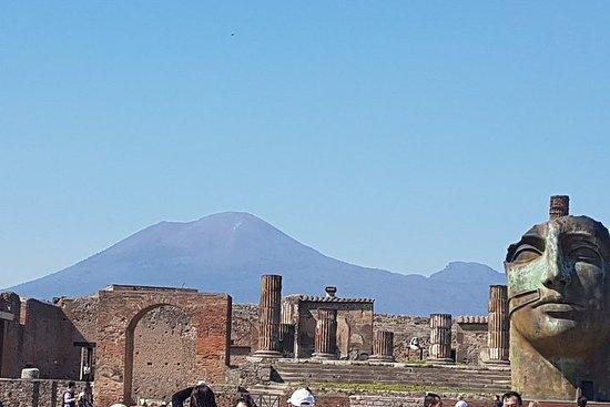 Excursión privada: Pompeya y Nápoles...