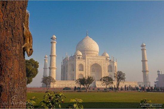 Samme dag Taj Mahal Tour fra Mumbai med...