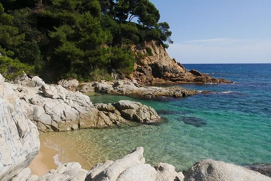 Costa Brava Small Group with Hotel Pick-Up and Panoramic Boat Ride