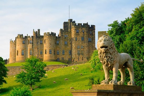 Viking Coast och Alnwick Castle Small ...