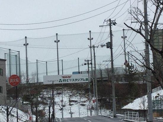 Wellfam Foods Shinrin-dori Stadium Izumi