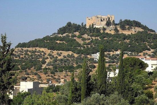 Tour por la arquitectura romana y los...