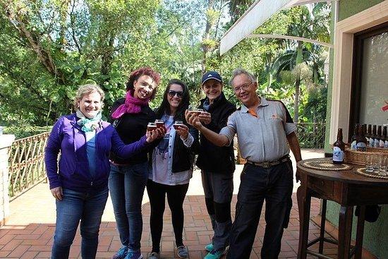 Wine, Craft Beer and Cachaça: Serra do Mar Tour from Curitiba