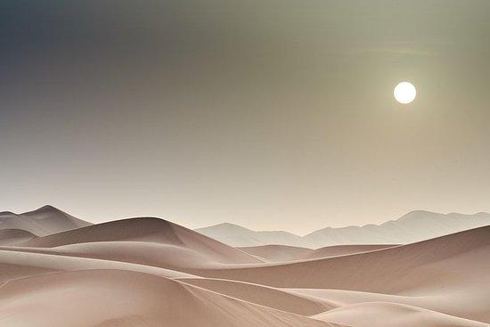 9 Tage in der Wüste Gobi mit einem...