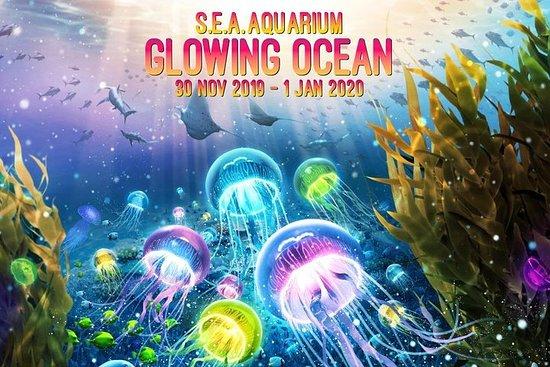 South East Asia (S.E.A.) Aquarium™ – fotografija