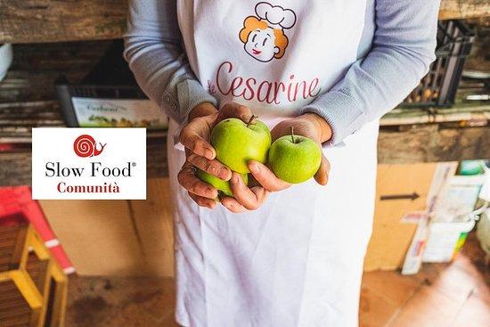 廚師的秘密:慢食物的蒙特普齊亞諾烹飪課和凱撒琳食譜