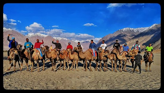 Ladakh Package Tours - 2020 Join our #Ladakh #Packages. They are designed keeping in mind the safety and enjoyment of riders, families, kids and girls. So they are fit for all. Choose between- #RoyalEnfield / #MUV / #TempoTraveler For further details visit : https://www.facebook.com/tonybikecentre/events/admin/ The pic below shows #riders taking a break and enjoying a camel ride in #Hunder #SandDunes of #Nubra Valley, #Leh. The pic is of Leh Ladakh #Bike #Expedition of 2019. #ride #explore #adve