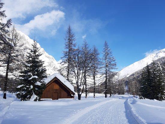 Курмайор, Италия: lungo il sentiero