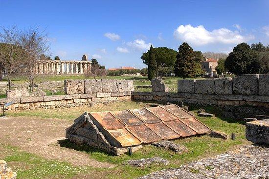 Paestum: histoire et manger avec du...