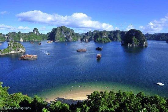 Ganztägige Erkundung der Bai Tu Long Bay Foto