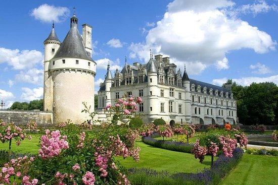 Loire Valley slott Privat dagstur fra...