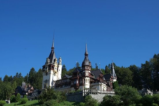 Peles and Bran Castles Tour from...