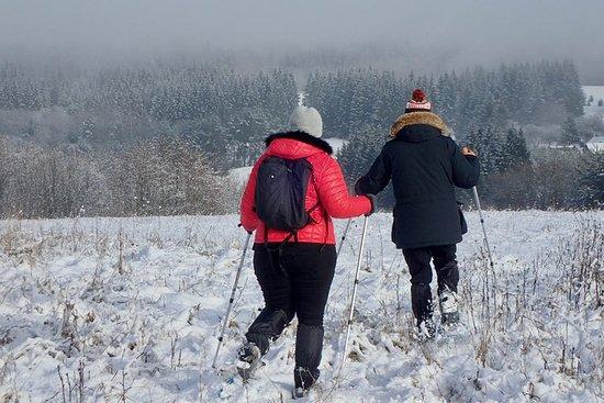 Halbtägige Schneeschuhwanderung zum...