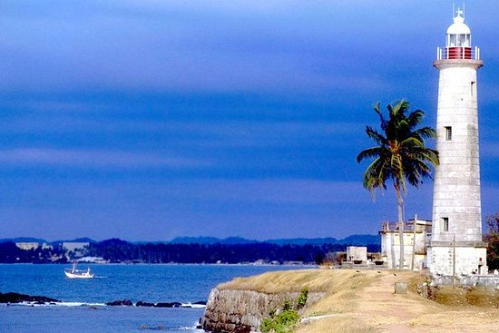 Galle Day Trip With Mangrove Safari...