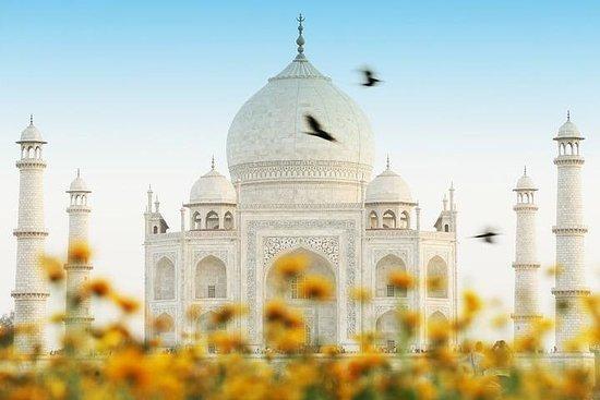 Visite privée du Taj Mahal en train...
