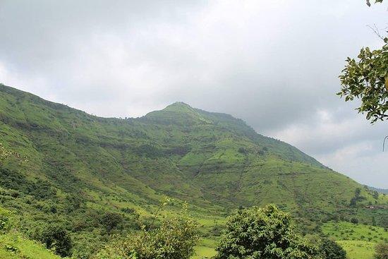 Fra Mumbai Green & serene Hill...