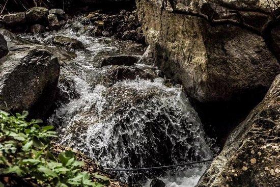 Ourika-Tal: Tagesausflug zum...