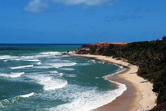 Excursión de día completo a la playa...