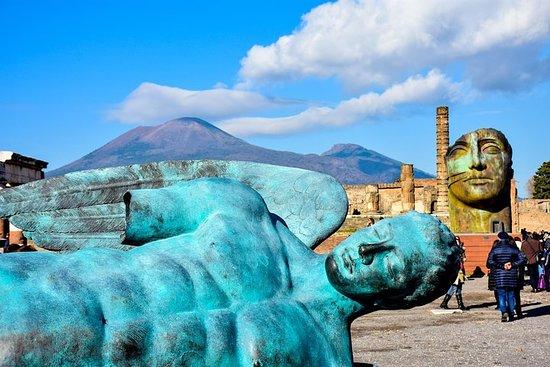Excursion d'une journée à Pompéi et au...