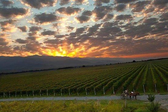 Viagem de um dia a Kakheti (Wine Tour)