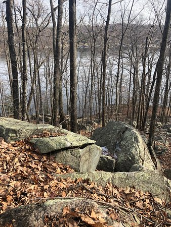 Absolutely beautiful hike. Easy terrain with gentle slopes and excellent views. Lots of sightings today: deer, red headed woodpecker, squirrels, blue jays, hares and many birds. Excellent views of Candlewood Lake and trails that connect to it. Beautiful way to spend an afternoon!