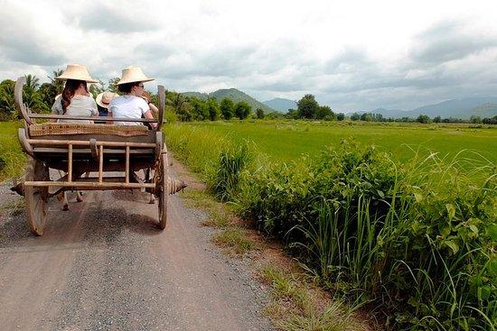¡Explorar! Un día como agricultor de arroz