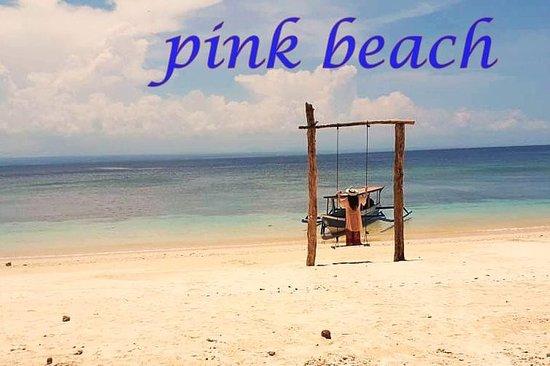 increíble tour en la playa rosa