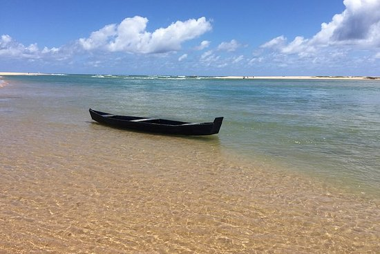 Praia do Forte strand tur, bli kjent med costa dos coqueiros