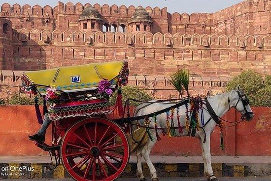 Delhi Agra même jour avec guide privé