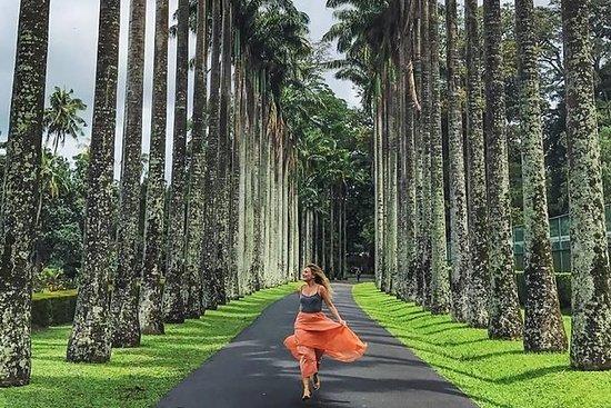Excursión privada de un día a Kandy...