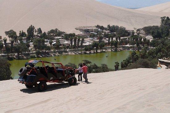 Von Lima: Ganztägig Ica - Huacachina