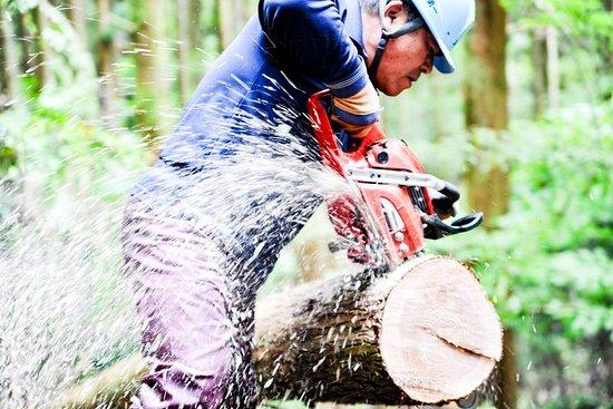 Rural Forestry Tour i Aso Minamioguni