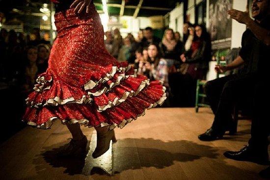 Malaga Tapas Tour met Flamenco Show