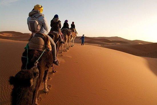 3日間のサハラ砂漠ツアー-マラケシュからメルズーガへ