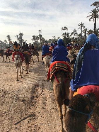 Combo Quad Camel包括午餐照片