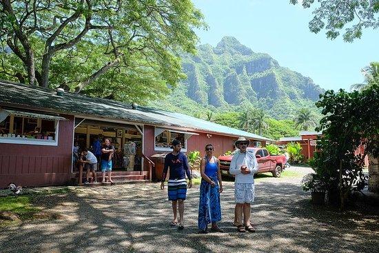 Trésors cachés d'Oahu avec snorkeling...