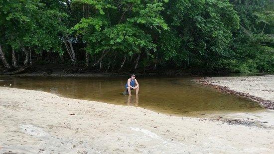 Province of Limon, Kostarika: Playa Manzanillo, Limon, Costa Rica