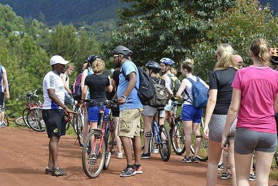 Youth Peace makers Sykkelutleie og turer