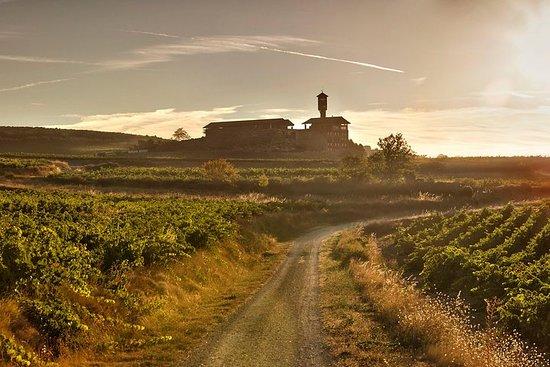 拉里奥哈(La Rioja)两个酿酒厂以小组游的方式参观品酒和品脱啤酒