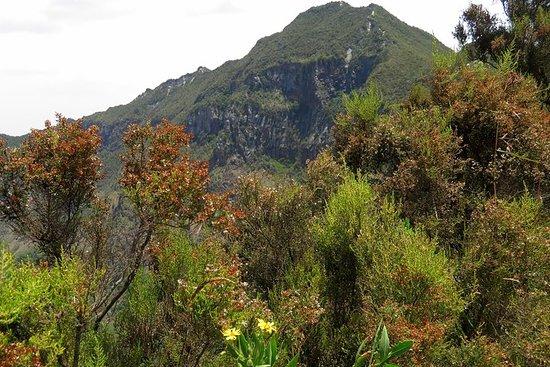 Escursione di 1 giorno al Monte Longonot