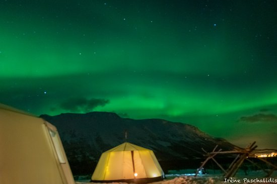 Foto Overnight Stay in Lavvu, Northern Lights, and Reindeer Sledding in Tromso