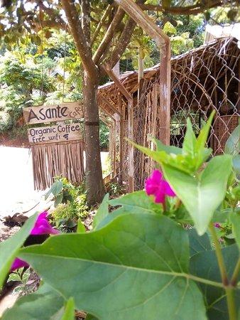 Asante Cafe sign board in Lushoto