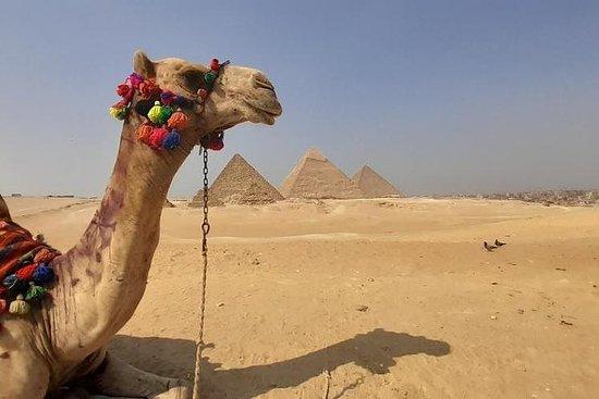 私人遊覽吉薩金字塔,孟菲斯,薩卡拉,騎駱駝-含午餐