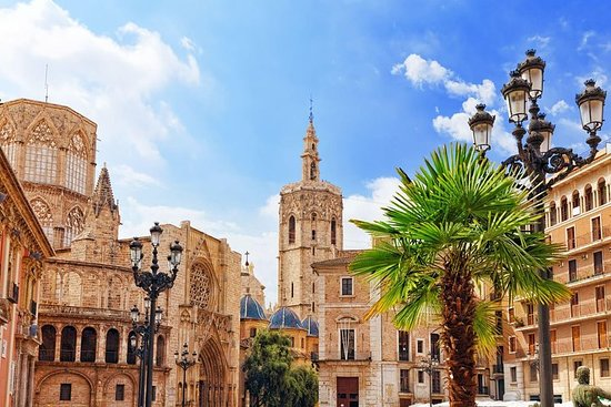 Day Trip from Calpe to Valencia. Historical center and City of Arts...