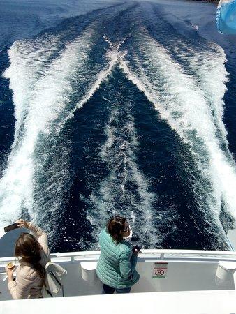 Navegando hacia Puerto Blest