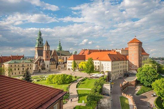 Krakow - Wawel Castle Rondleiding met ...