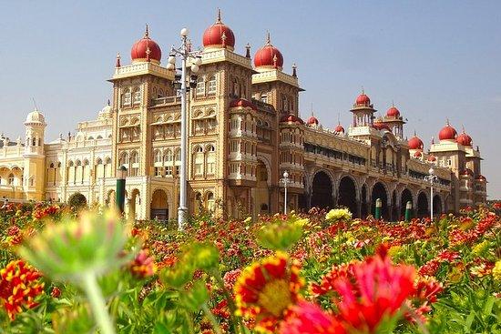 Tour privato di un giorno a Mysore con visita a Srirangapatna