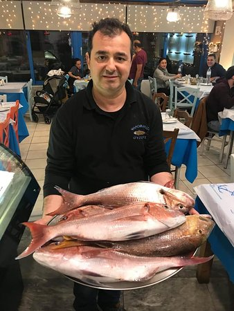 Our dialy Fresh Fishes from endless greek sea!