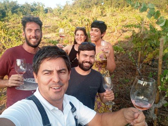 PRIOR LUCAS Vinhos Wines