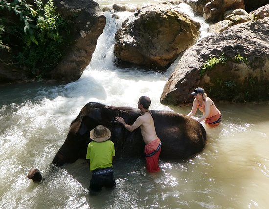 Mountains and Lake Bike Adventure: Rub a dub dub in the tub....this elephant loved his bath and we got to give him one!
